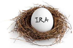 Egg with IRA written on it, in a nest