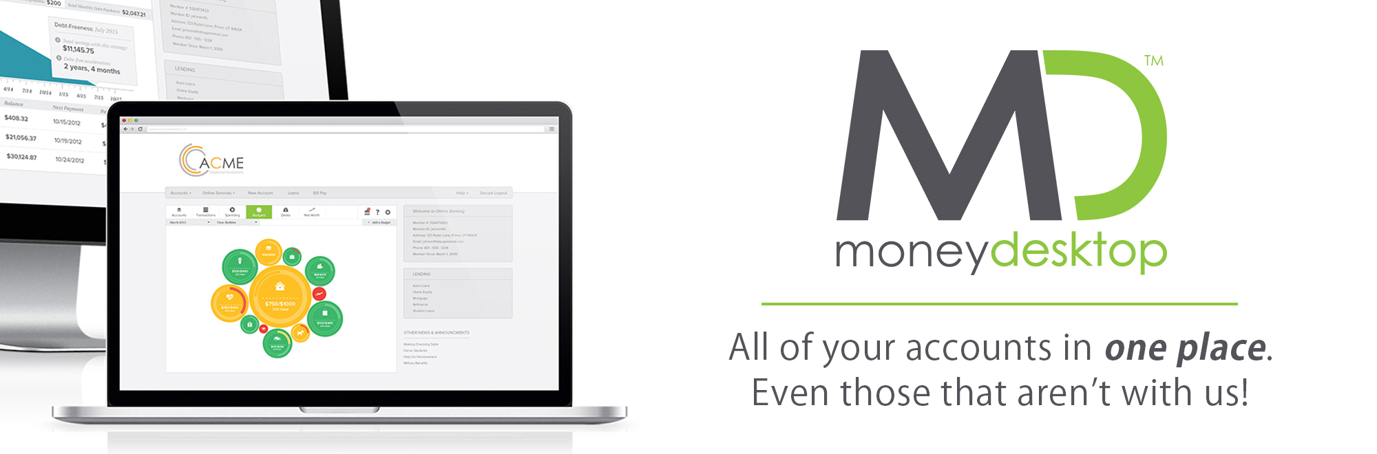 All of your accounts in one place with MoneyDesktop